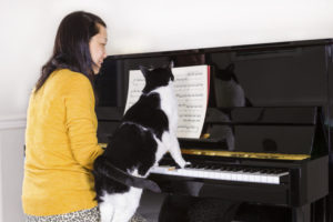 A woman playing piano with her family Cat